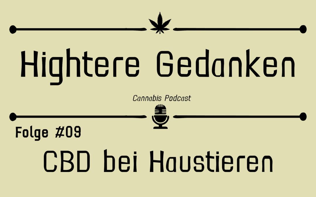 Hightere Gedanken Podcast Folge 09