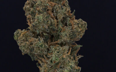 420 Natural 18/1 (Sour Kush)